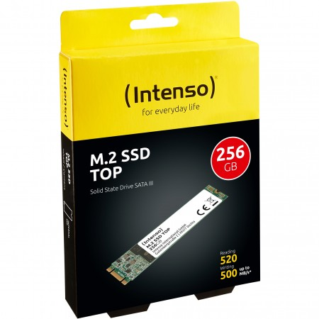 Intenso SSD 256GB M.2 Top Performance